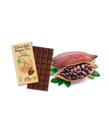 CHOCOLATE NEGRO 73% 100GR BIO