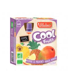 COOL FRUITS MANZANA MANGO PIÑA 4X90 GR VITABIO BIO