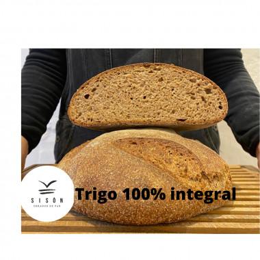 PAN TRIGO INTEGRAL1 KG BIO