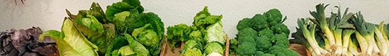 Tienda de Alimentación Ecológica