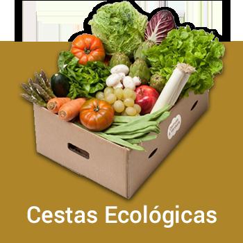 Cestas Ecológicas